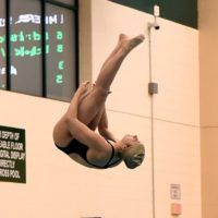 2019 Greater Miami Conference Diving Championships